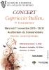 affiche-concert-101111
