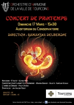 affiche-concert-130317