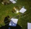 beaux les instruments en repos sur l'herbe